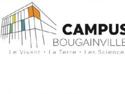 OFFRE D'EMPLOI D'ASSISTANTS D'EDUCATION – Lycée Bougainville